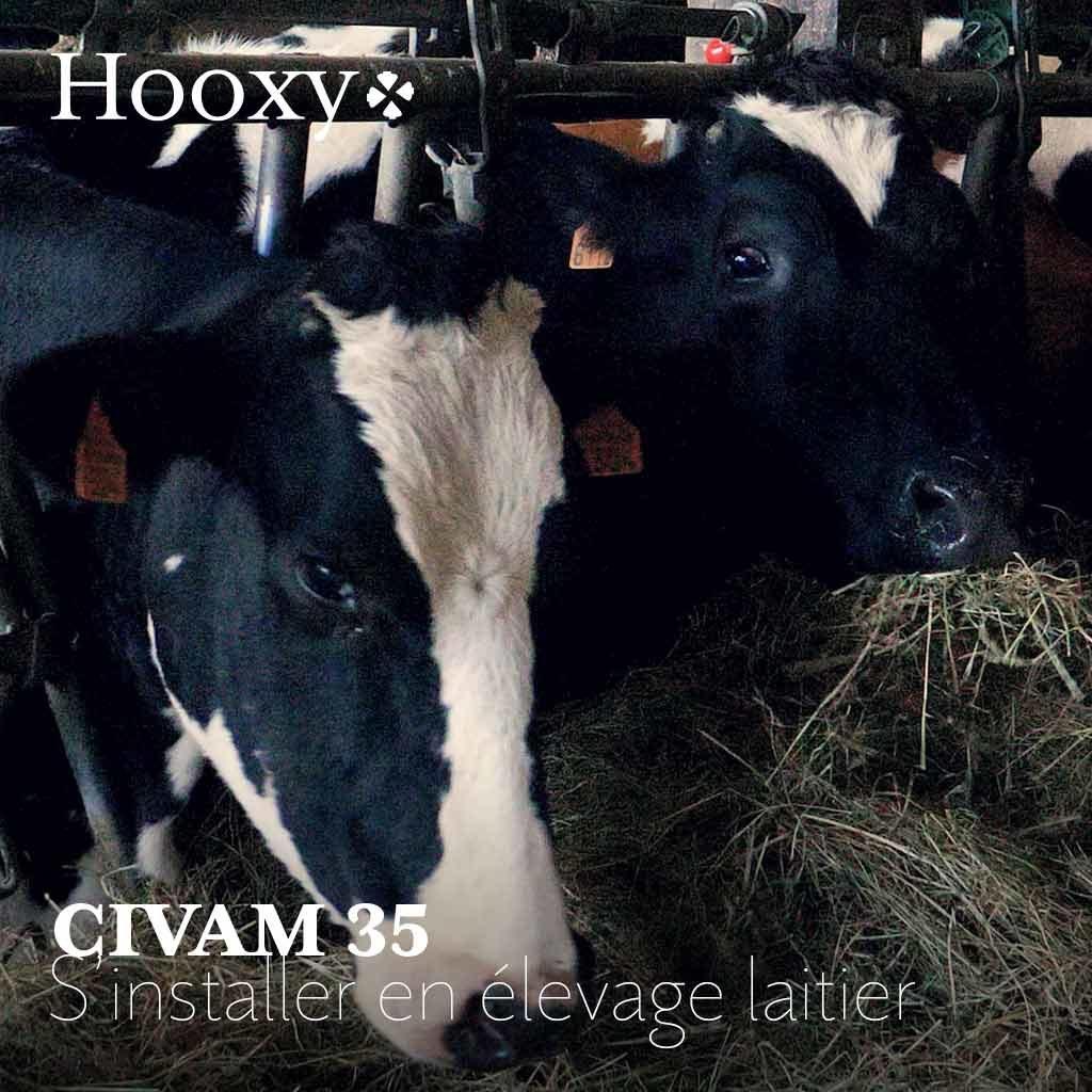 S'installer en élevage laitier avec le CIVAM 35