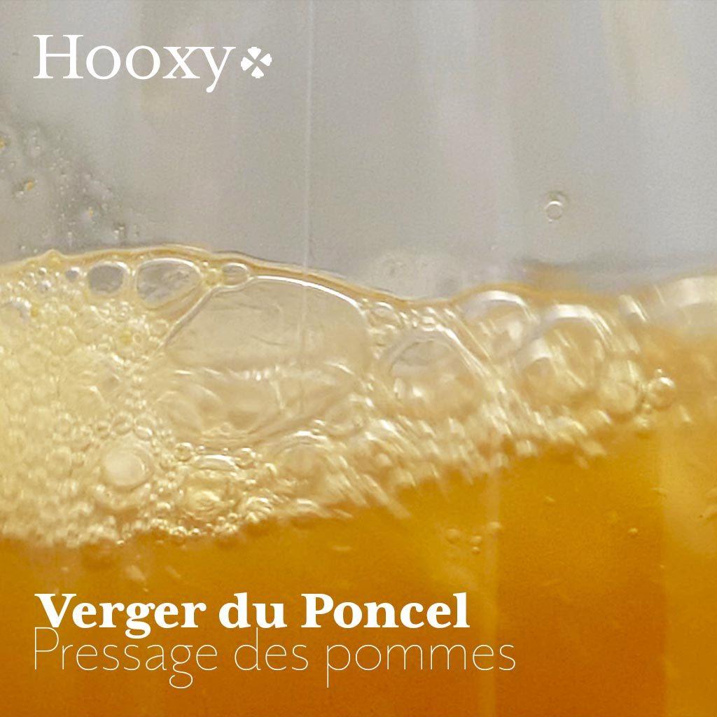 Vidéo du pressage des pommes du verger du Poncel à Québriac