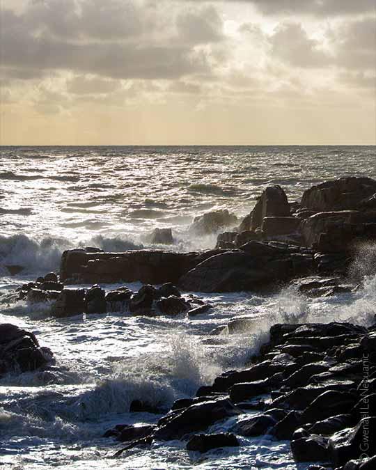 La côte sauvage de la presqu'île guérandaise